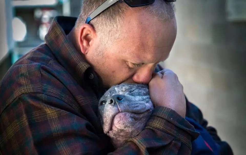 Puppy's lonely in shelter – until the firefighter who saved her from neglect brings her home